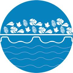 nettoyage de piscine maroc